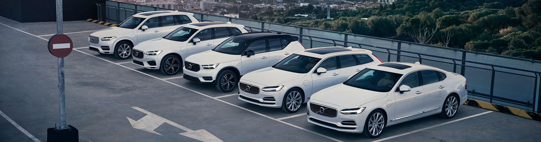 bg-auto-rulate-excellence.jpg